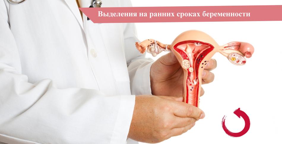 Выделения у женщин на ранних сроках